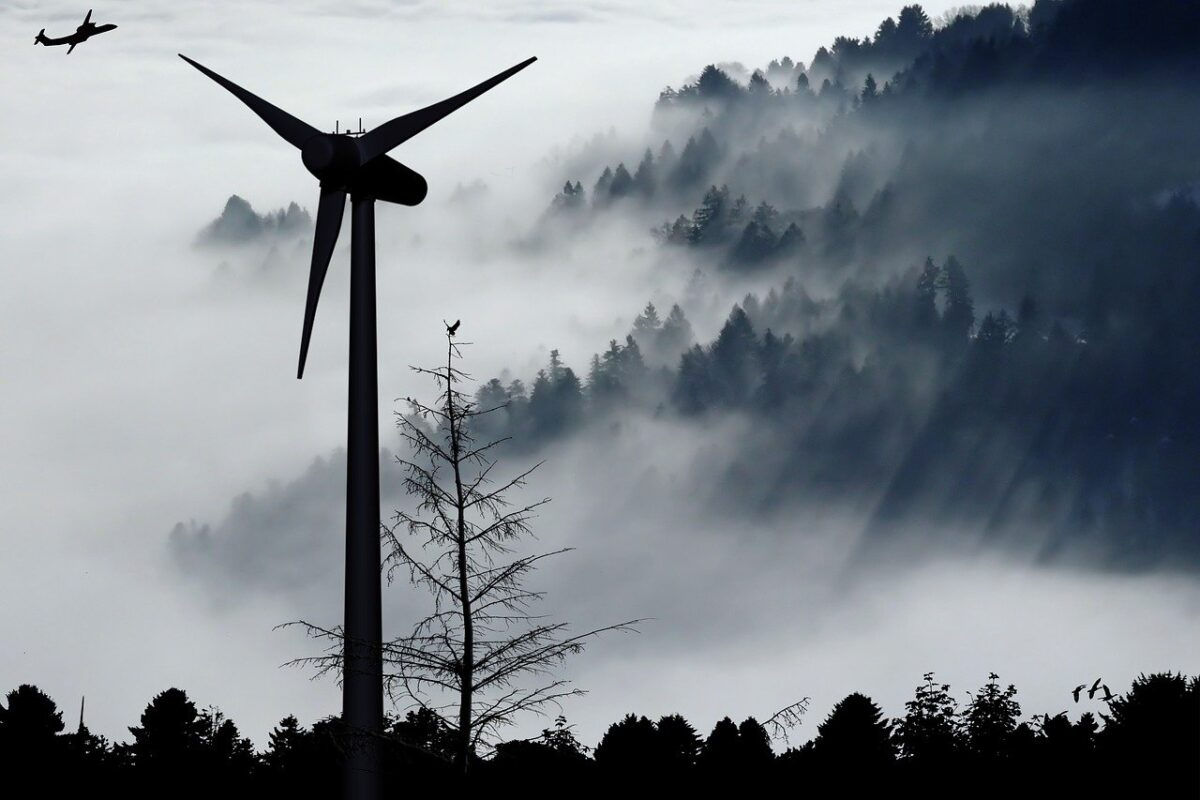 Nachhaltig leben: Die Rolle des Ökostroms im europäischen Vergleich